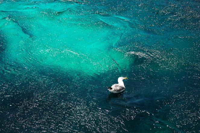 Смарагдово-тюркоазените води на архипелага Мадалена