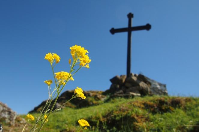 Кръстът