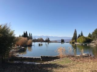 Езерото в парка на резиденция Св.Врач