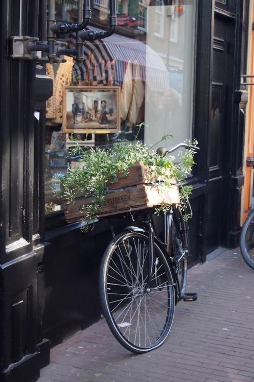 Колелото, най-предпочитаният транспорт за местните