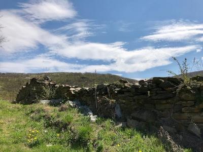 Останки от крепостта Урвич