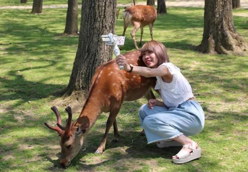 Селфи с елен