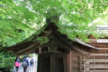 В храма Рьоан-джи