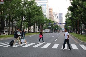 На пешеходната пътека