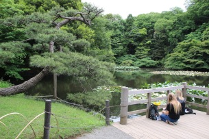 В градините на храма Мейджи