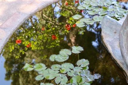 В градините на Август