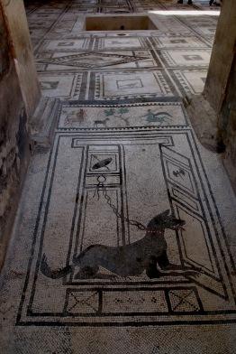 Мозайките в къщата на Пакий Прокулус