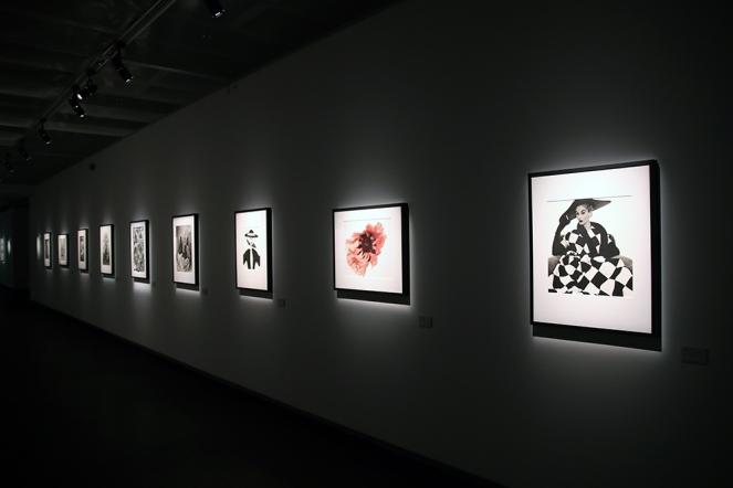 Изложба на Ървинг Пен във фотографската галерия.