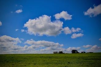 Зелени полета и пухкави облаци.