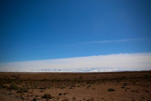 Снежни планини и пустинни полета.