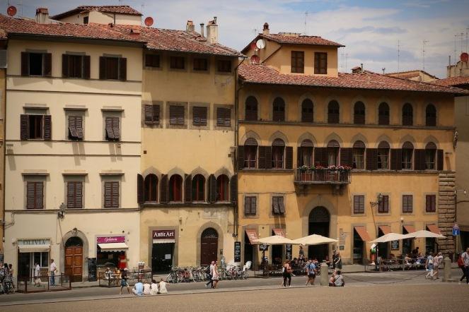 Сгради срещу двореца Пити.