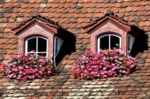 Като две очи на покрива в Базел.