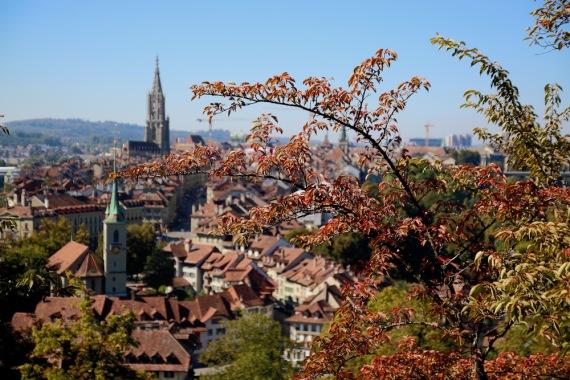 Гледката към стария град от розовата градина.