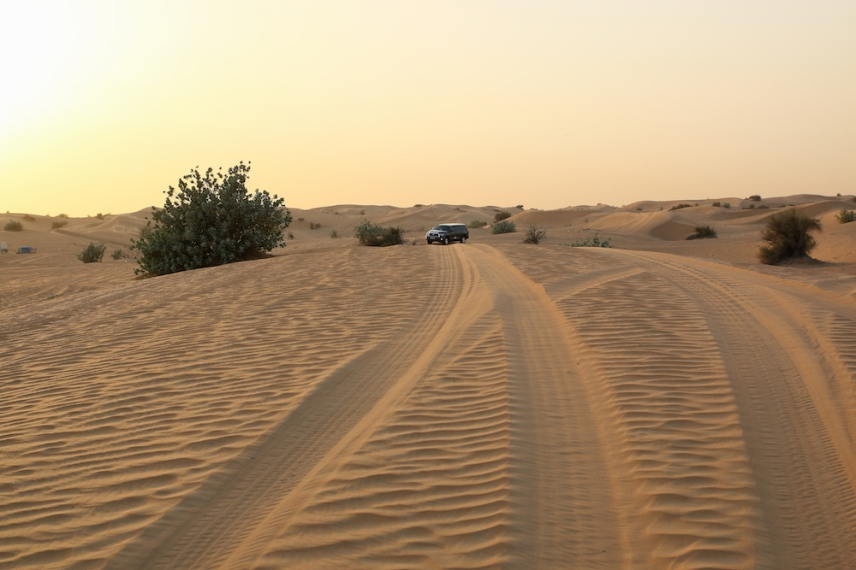 Залезът в пустинята