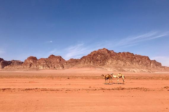 Пейзажът във Вади Рум.