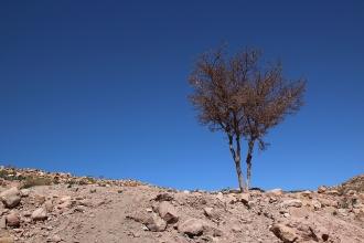 Долината Фараса.