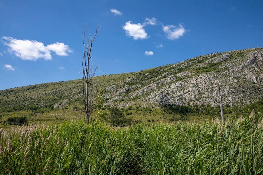 Драгоманското блато и Чепън планина.