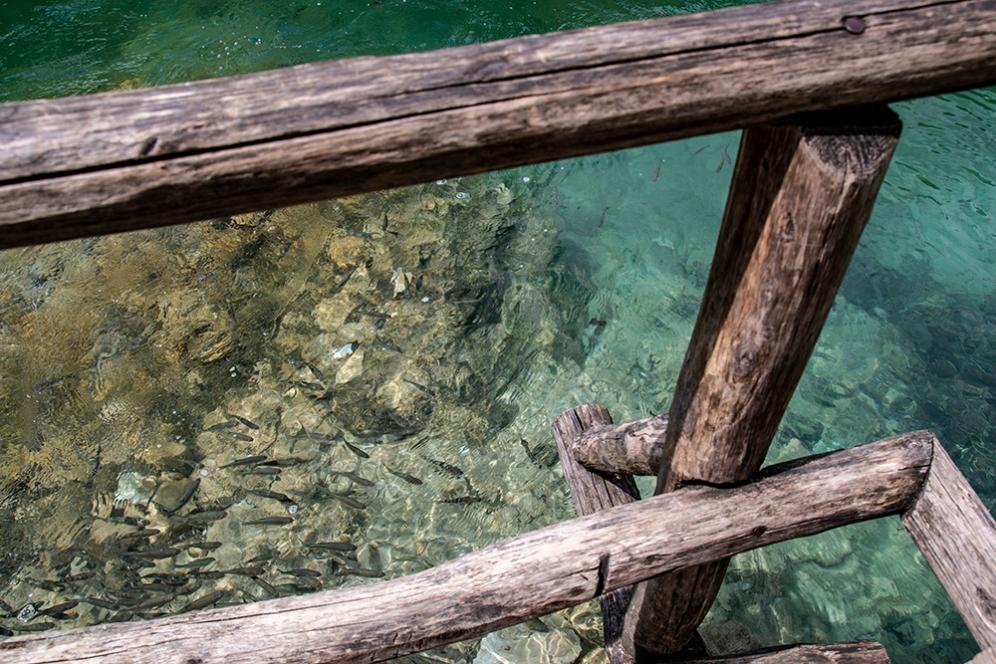 Кристално чистата вода на Плитвичките езера.