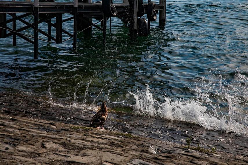 На брега на езерото Комо, Беладжо.
