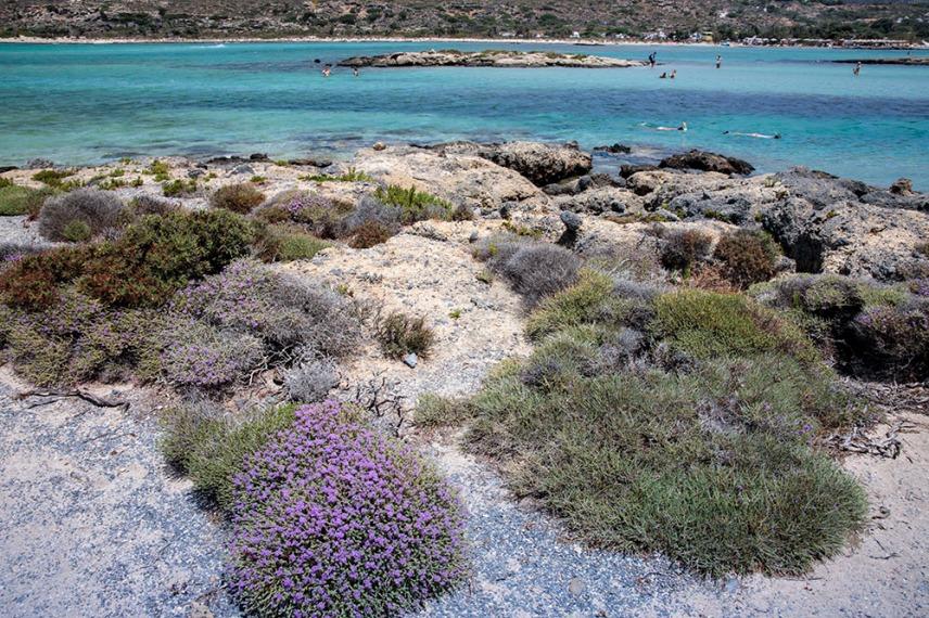 Остров Елафониси.