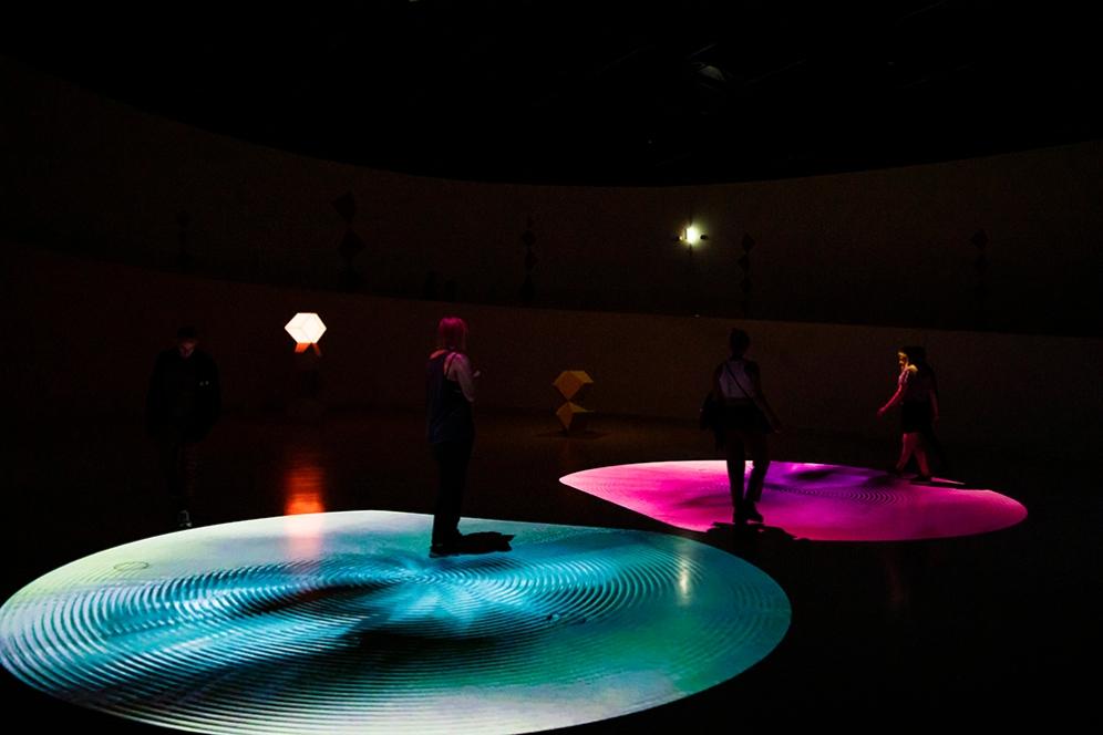 Звук и светлинни ефекти. Част от изложбата Animal Vector.