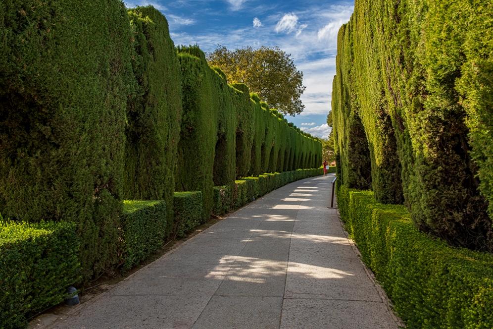 В градините на Алхамбра.