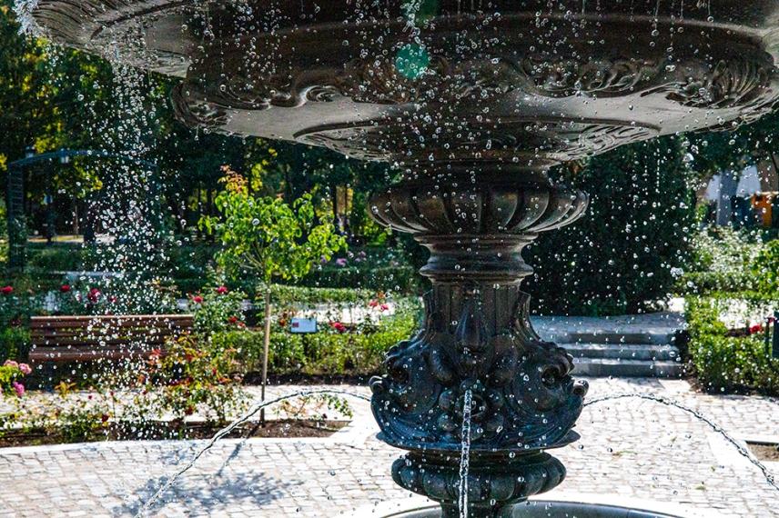 Борисовата градина.