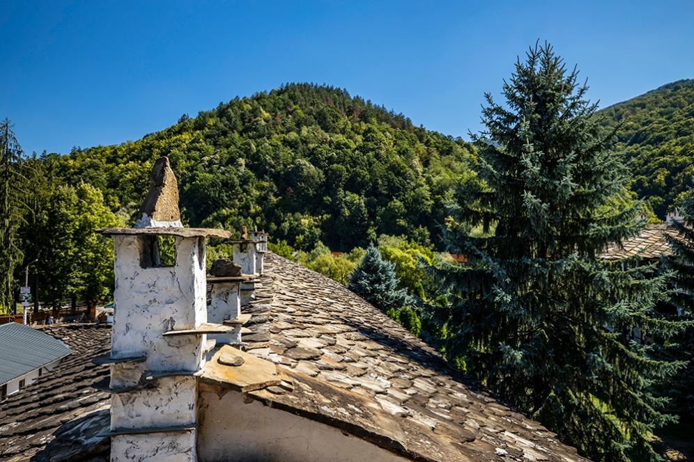 Природата около Троянския манастир.
